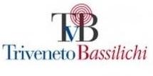B06consorzio-triveneto-1